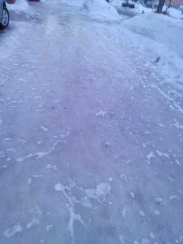 スケートリンク状